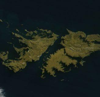 Islas Malvinas: historia, ubicación, clima, turismo, flora, fauna y más