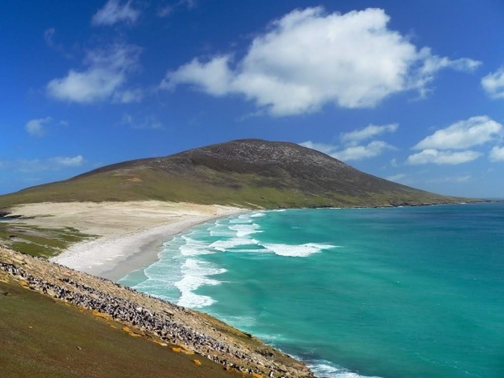 principales playas de las isla malvinas