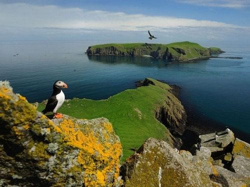 Escocia: Islas Orcadas, Shetland y Hébridas exteriores