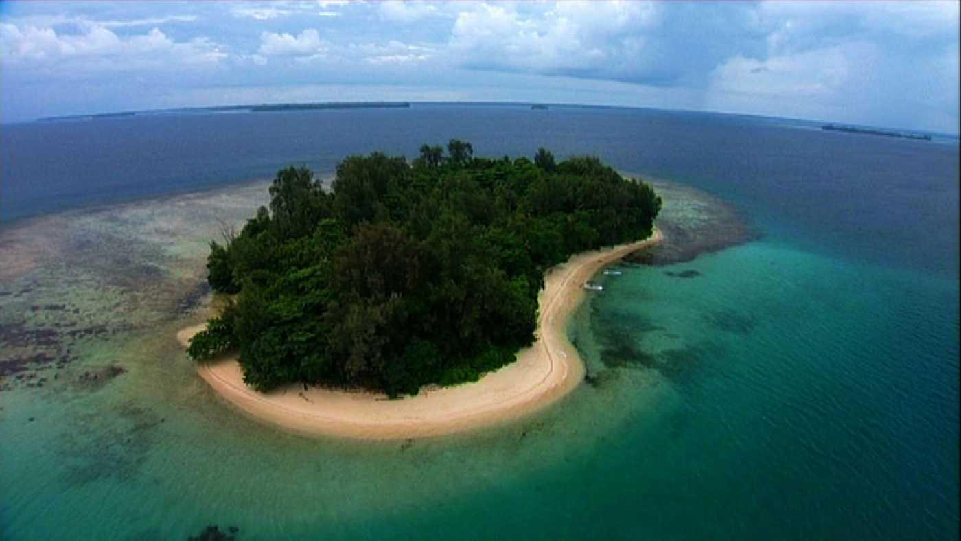 Islas molucas ubicaci n mapa lugares tur sticos y mucho m s - La isla dela cartuja ...