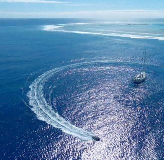Isla Ducie: lo que aun no sabes sobre ésta hermosa isla