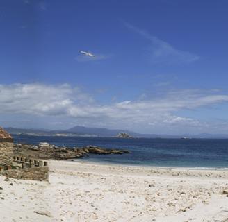 Isla de Sálvora: historia, ubicación, mapa, fauna y más