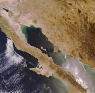 Península de Baja California: características, límites, flora, fauna y más