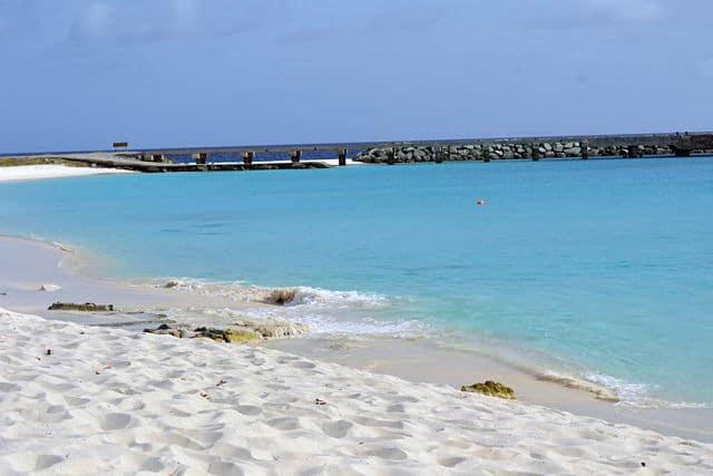 7. Isla La Orchila