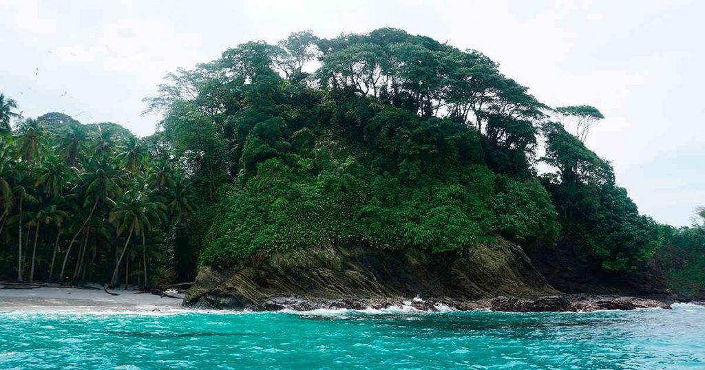 Isla Gorgona: historia, ubicación, turismo, recursos naturales y mucho más