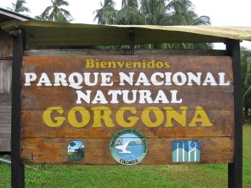 parque nacional natural de isla gorgona
