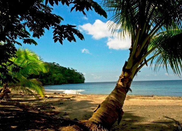 clima de la isla gorgona