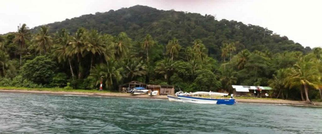 articulo sobre la Isla Gorgona