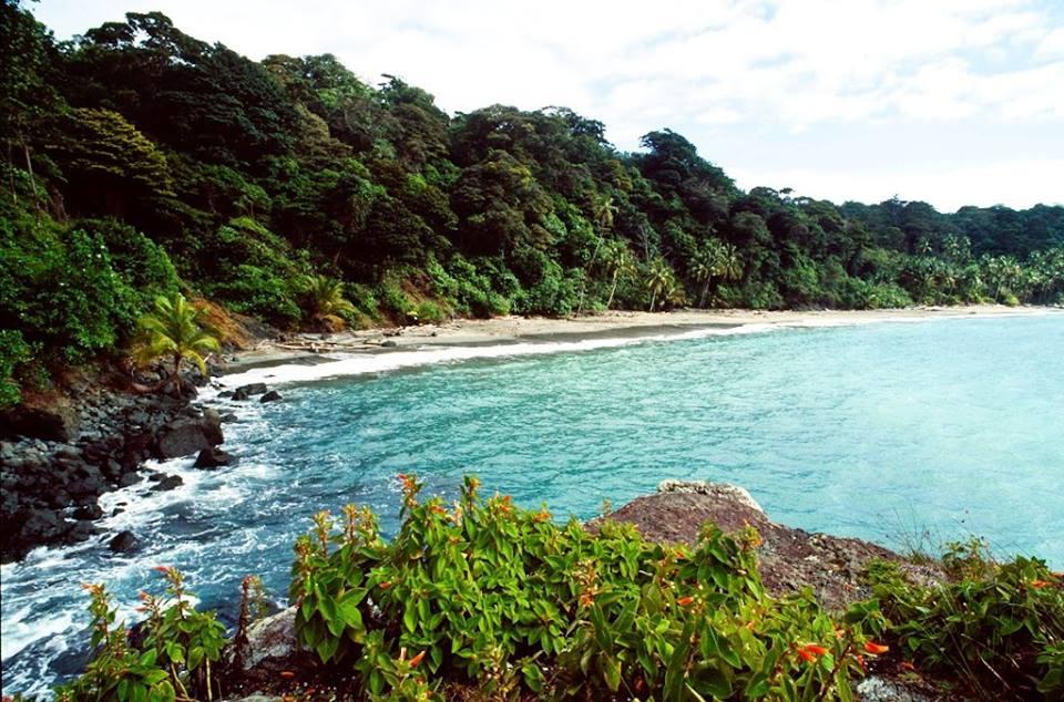 historia de las Isla Gorgona