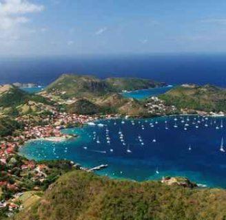 Isla Guadalupe: ubicación, clima, turismo, flora, fauna, gastronomía y más