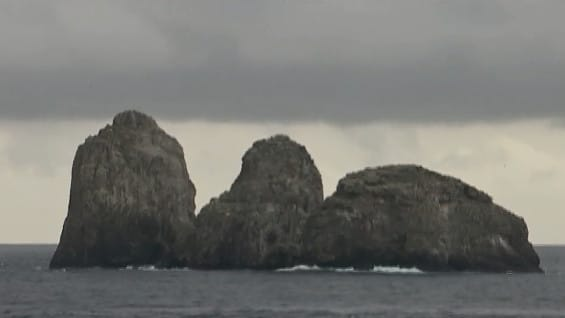 Isla-de-Malpelo-8