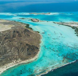 Isla la Orchila: ubicación geográfica, clima, vegetación y mucho más