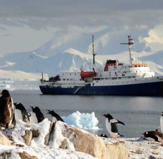 Islas Shetland del Sur: lo que aún no sabes de este archipiélago antártico