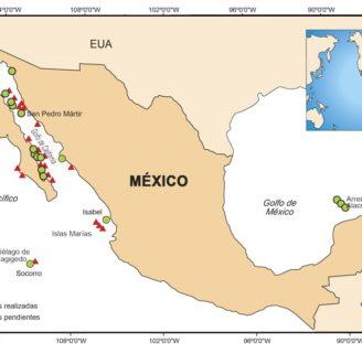 Islas de México: todo sobre el territorio insular de la República Mexicana