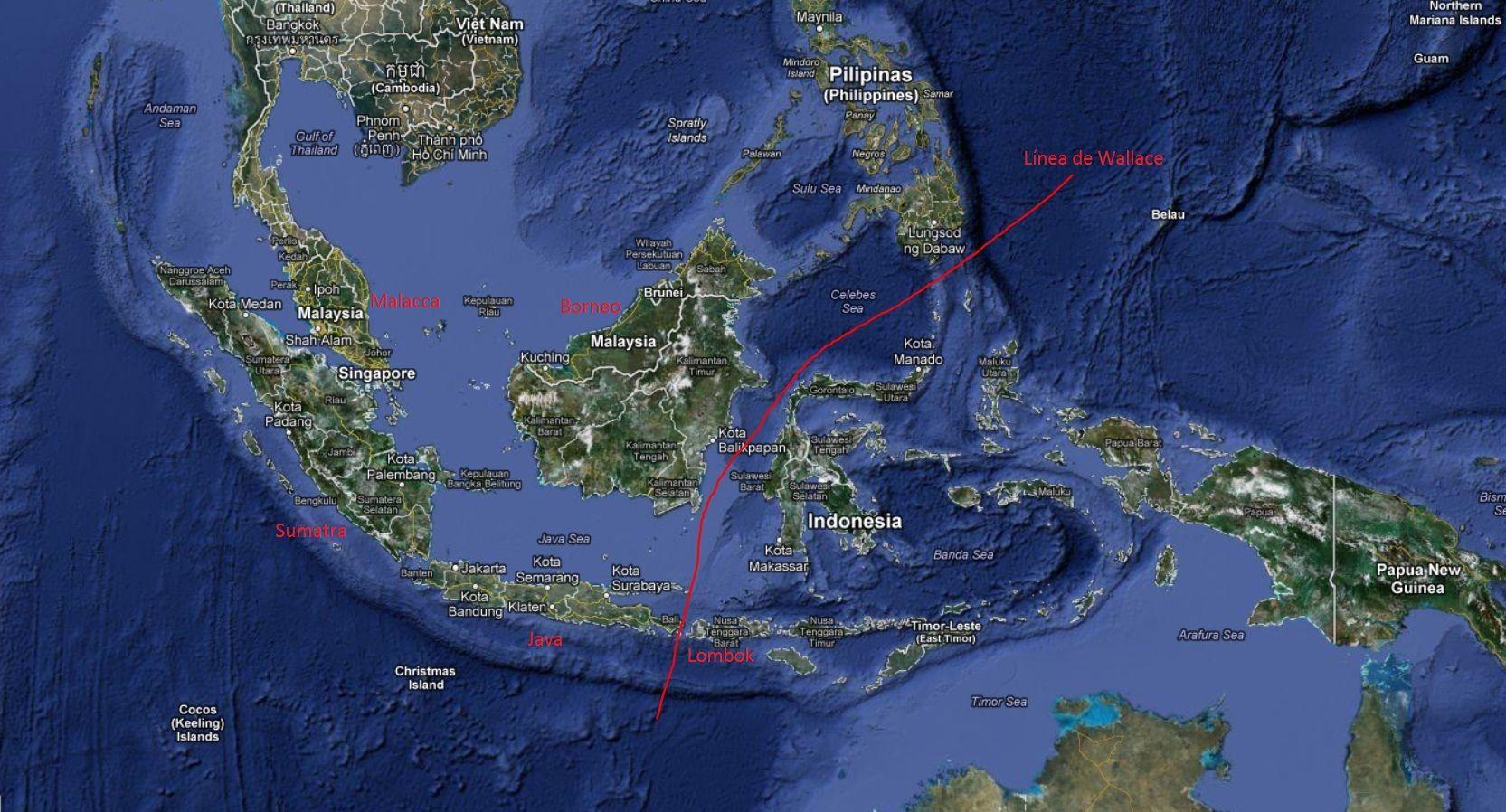 archipielago malayo 1