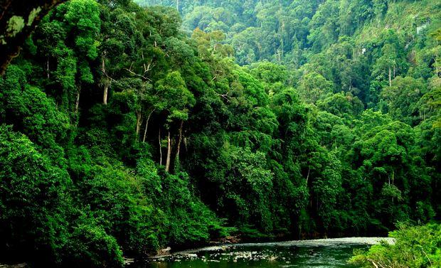 islas-de-indonesia-11