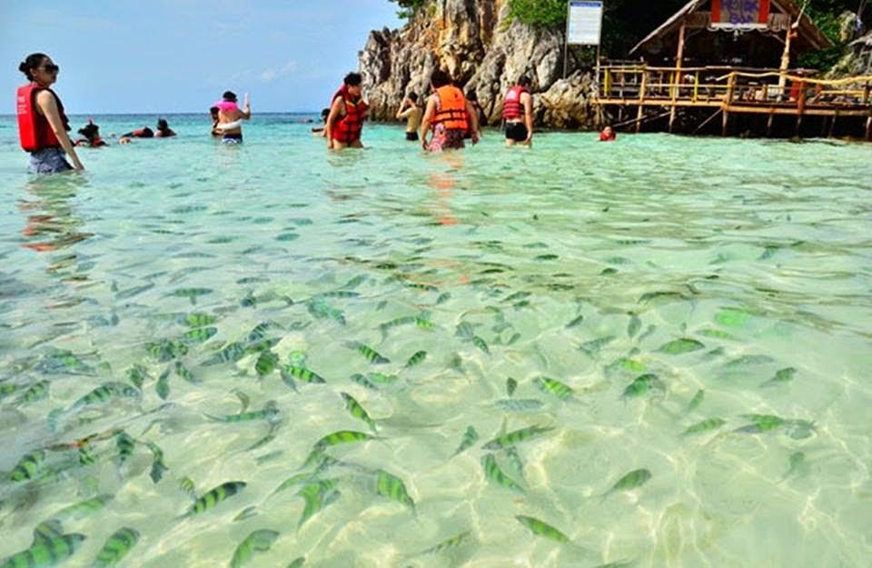 islas-de-indonesia-24