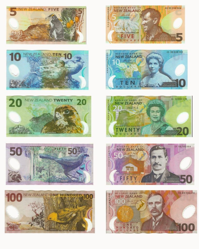 billetes de dolar neozelandes