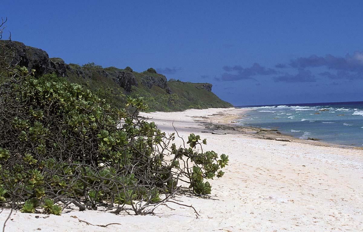 Isla-Ducie-2