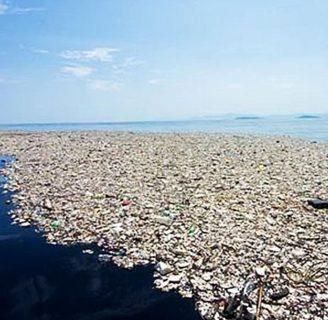 Isla de Basura: descubrimiento, ubicación, soluciones y más