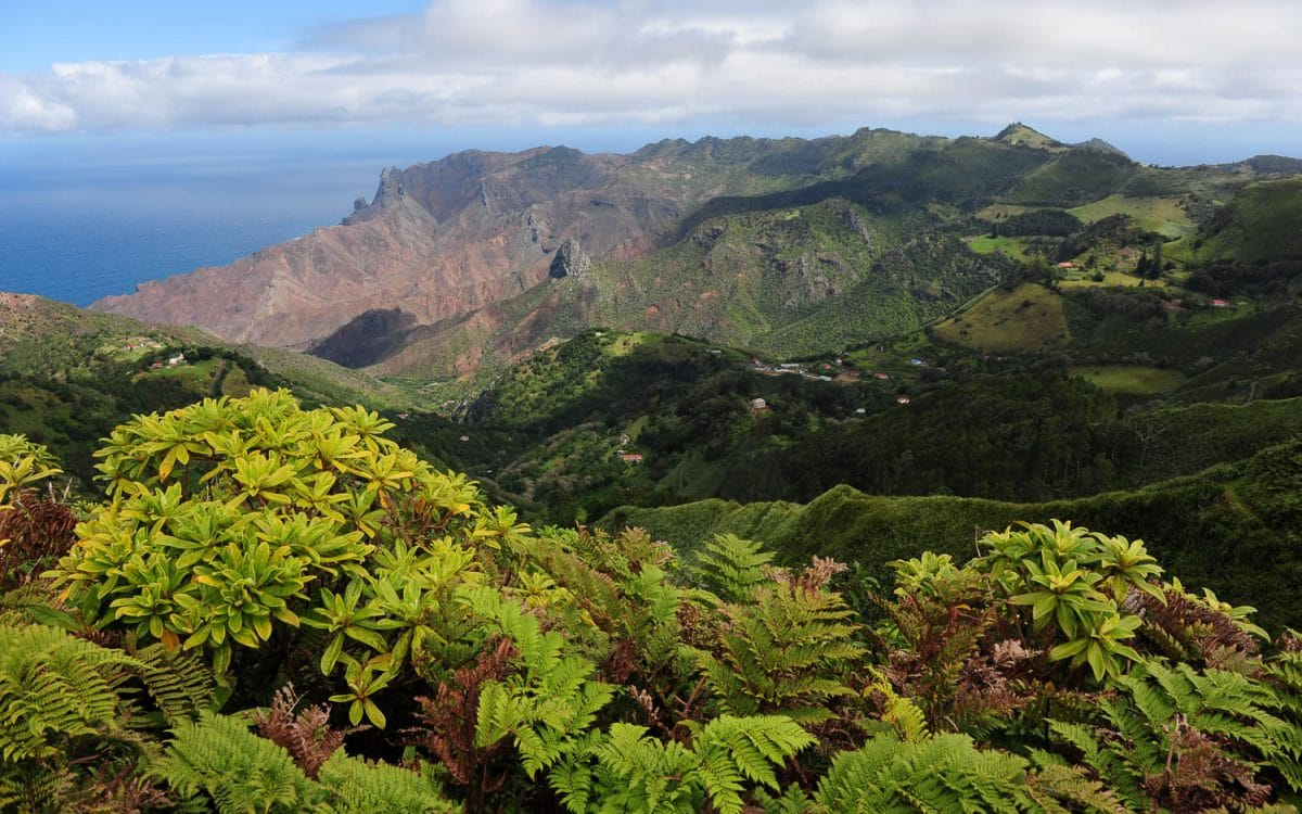 isla de santa elena 8